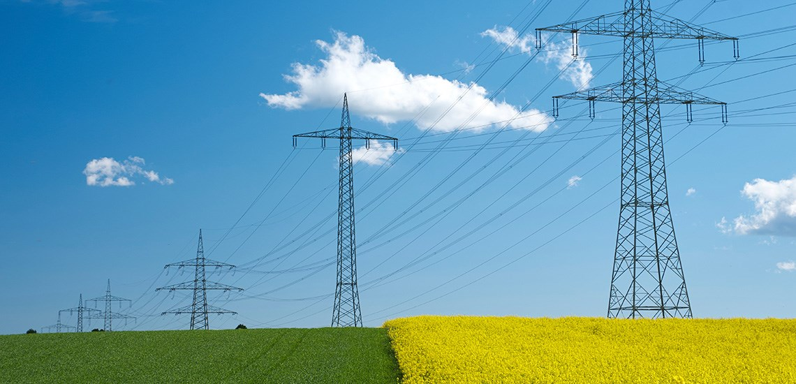 Electricity pylons on fields of crops silhouetted against a mostly blue sky
