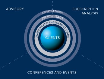 Clients served by Oxford Analytica's experts, divided by Oxford Analytica's services